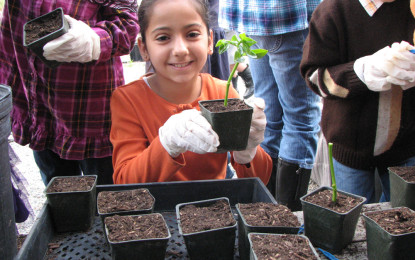 Social Responsibility Projects