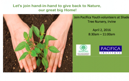 Join Pacifica Youth Volunteers Hand-in-Hand to Give Back Nature
