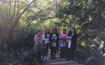 Pacifica Volunteers joined Madrona Woods Restoration Efforts