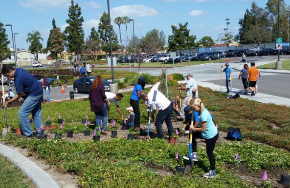 Pacifica Volunteers in Orange County joined the Community Service Day